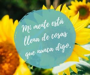 amor, feliz, and mente image