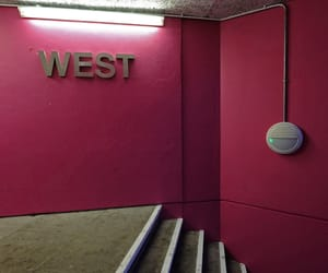 pink, stairwell, and West image
