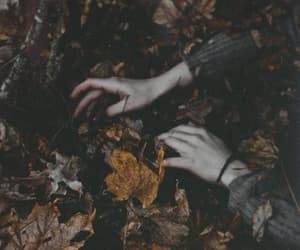 autumn, photography, and hands image