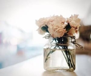 rose, flowers, and hipster image