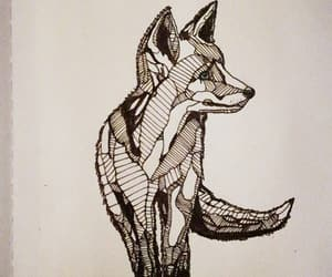 draw, fox, and drawing image