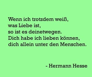 Hesse, liebe, and du image