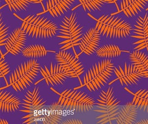 background, palm, and patterns image