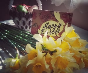 diy, narcissus, and post cards image