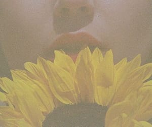 70s, flowers, and vintage image