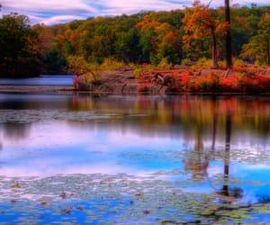 landscape, nature, and world image