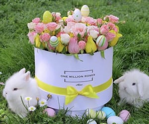 bunny, easter, and flower image