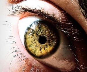 eye, green eye, and green eyes image