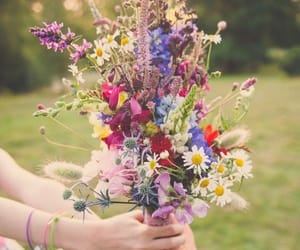 bouquet, colors, and spring image