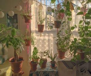 plants, room, and art image