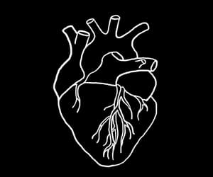 gif and heart image
