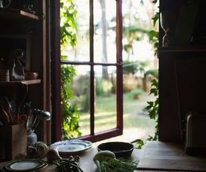 kitchen, nature, and window image