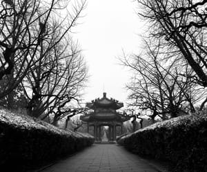 beijing, monochrome, and photography image