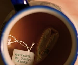 tea, quotes, and choice image