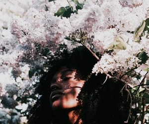aesthetic, curls, and flowers image