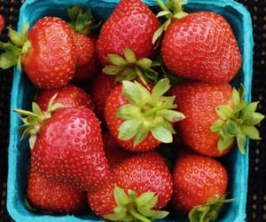 aesthetic, delight, and strawberries image