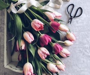 chic, flowers, and fresh image