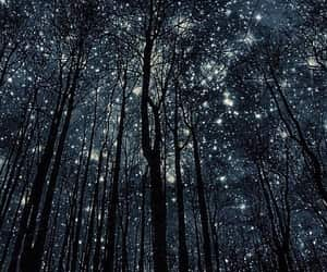 Dream, sky, and forest image