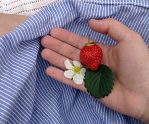 aesthetic, alternative, and strawberry image