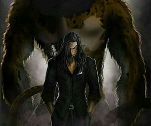 one piece and lucci image