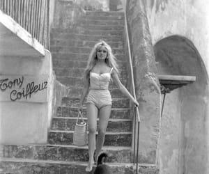 brigitte bardot and dog image