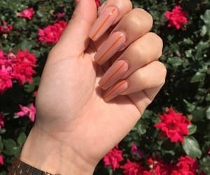 tumblr inspo, nails goals, and claws style image