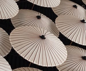 theme, umbrella, and white image