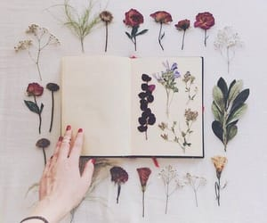 flowers, book, and grunge image