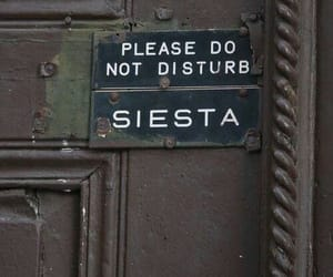 siesta and quotes image