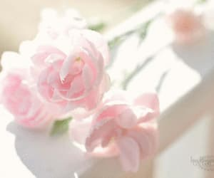 flowers, gif, and nature image