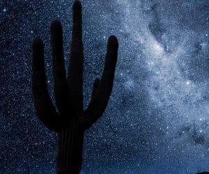 arizona, milky way, and desert image