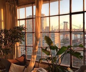 window, city, and plants image