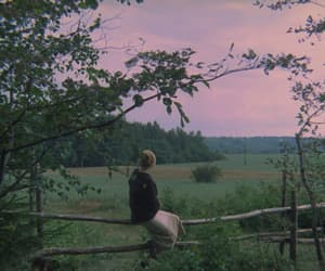 andrei tarkovsky and the mirror image