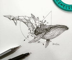 whale, art, and drawing image