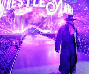 wwe and the undertaker image