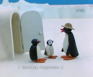 funny, pingu, and cartoon image