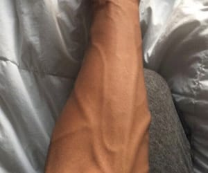 arm, man, and veins image