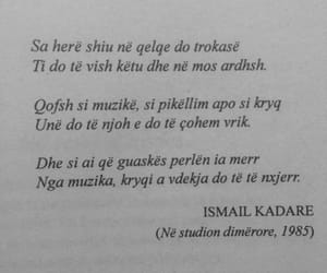 albanian, quote, and shqip image
