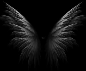 Angel Wings and gif image