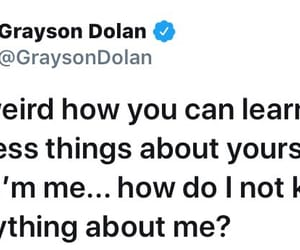 quotes, dolan, and grayson image