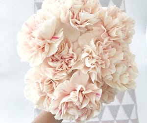 bouquet, pink, and love image