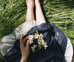 aesthetic, flowers, and grass image