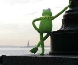 frog, muppets, and kermit image