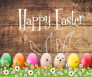 easter, bunny's, and colored eggs image
