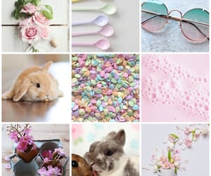 pink, spring, and pretty image