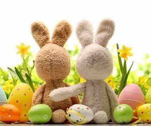 bunnies, easter, and friendship image