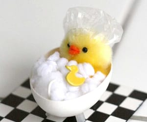 Chick, easter, and easter craft image