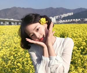 field, flower, and girl image