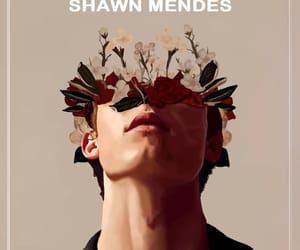 shawn mendes, art, and boy image