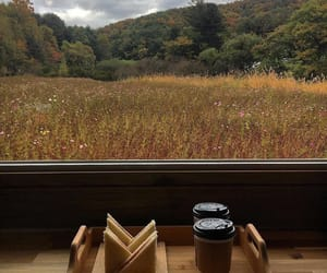 autumn, coffe, and trees image